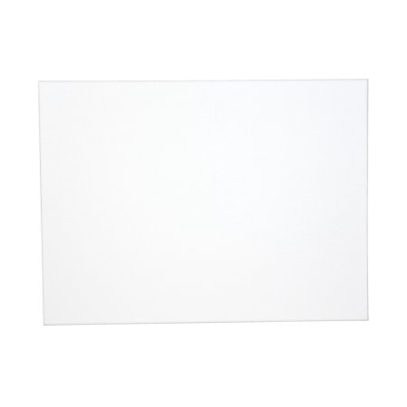 Sax Genuine Canvas Panel, 22 x 28 Inches, White for $5 from $7