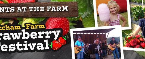 Strawberry Festival at Mitcham Farm April 28 from 10am to 6pm