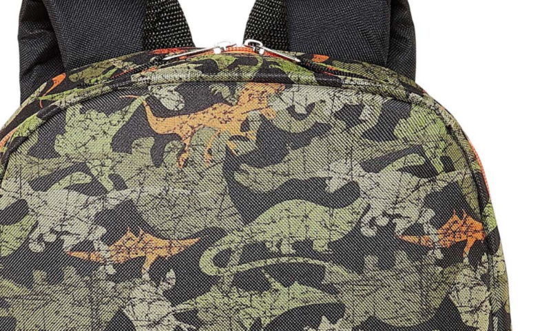 City Streets Camo Dino Backpack $3