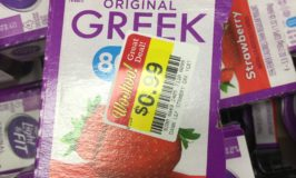 Dannon Light  Greek Yogurt $0.99