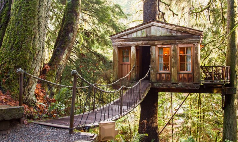 tree house point – Seattle ,USA