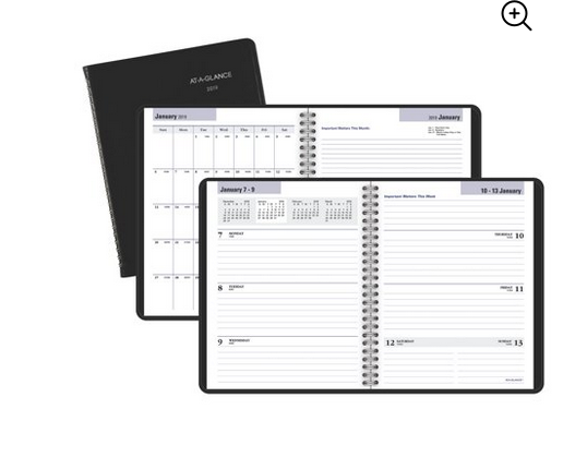 At-A-Glance DayMinder Executive Weekly Planner for $15
